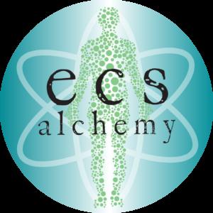cropped-ecs-alchemy-logo-w-gradient-and-typewriter-font-1-300x300